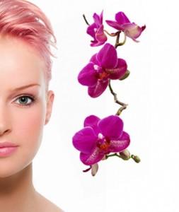 Beauty Saloon Software 2