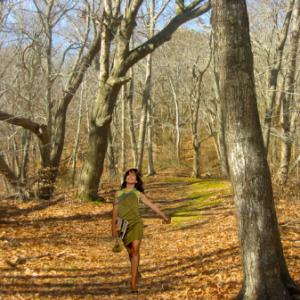 model-in-the-forest manan enterprise