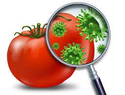 Pesticides software 1