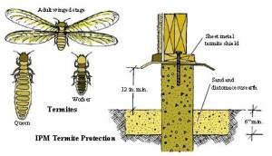 Pesticides software 8
