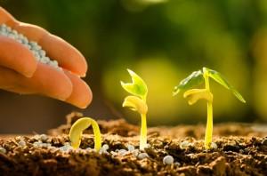 Fertilizer Shop Management Software Farming Agro 15.