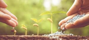 Fertilizer Shop Management Software Farming Agro 18