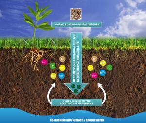 Fertilizer Shop Management Software Farming Agro 30