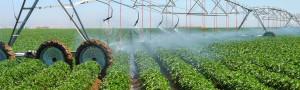 Fertilizer Shop Management Software Farming Agro 6