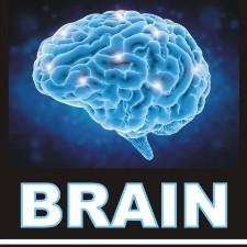 Brain Business Management Software