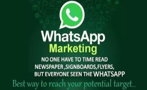 Bulk Whats App Marketing Tool Software